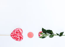 Composição com cosméticos e flores da composição no fundo branco Foto de Stock