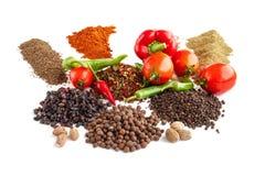 Composição com especiarias e as sementes diferentes Foto de Stock Royalty Free