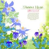 Composição com flores da mola: tulipas, narcisos amarelos, violetas, para Fotografia de Stock Royalty Free