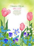Composição com flores da mola: tulipas, narcisos amarelos, violetas, para Imagens de Stock Royalty Free