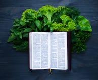 Composição com salada e Bíblia Foto de Stock Royalty Free