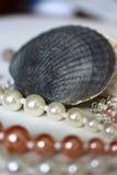 Composição com shell e cordas das pérolas imagens de stock