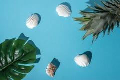 Composição criativa com conchas do mar, folha de palmeira tropical e abacaxi no fundo azul pastel Conceito mínimo do verão fotografia de stock royalty free