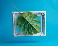 A composição criativa fez da folha de palmeira com quadro do vintage Conceito mínimo do verão imagens de stock royalty free