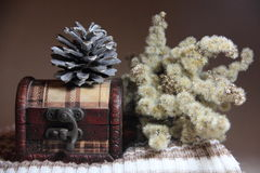A composição da caixa, da colisão e de flores secadas Imagem de Stock Royalty Free