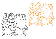 Composição da colheita das frutas Fotografia de Stock Royalty Free
