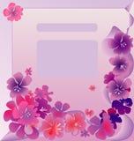 Composição da flor Fotos de Stock Royalty Free