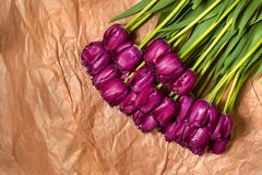 A composição da flor fresca, tulipas roxas do ramalhete no ofício forra o fundo Valentim, ` s das mulheres, o 8 de março, anivers Foto de Stock