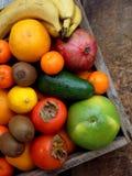 A composição da mistura coloriu frutos tropicais e mediterrâneos no fundo de madeira Conceitos sobre a decoração, Imagens de Stock Royalty Free
