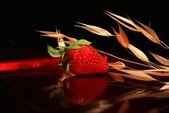 Composição da morango Fotos de Stock