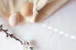 Composição da Páscoa de ovos de Kurt e de galhos da árvore com florescência foto de stock royalty free
