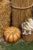 Composição das abóboras com feno no fundo de madeira fotos de stock royalty free