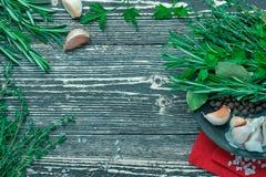 Composição das ervas e das especiarias Fotografia de Stock