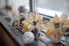 Composição das flores do Natal e de ano novo Fotografia de Stock Royalty Free