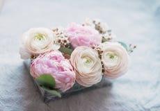 Composição das peônias e das rosas fotos de stock