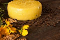 Composição de alimento do queijo gourmet Fotos de Stock