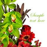 A composição de aumentou, gerbera, orquídea e antúrio Imagens de Stock Royalty Free