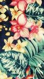 Composição de Colorfull Imagens de Stock Royalty Free