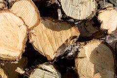 Composição de madeira do fundo de Cutted foto de stock