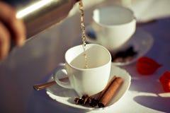 A composição de um piquenique da mola com os dois copos do chá quente com as varas da canela e do anis, chá derramou da garrafa t Imagem de Stock Royalty Free