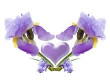 Composição de uma flor Fotografia de Stock Royalty Free