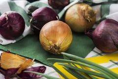 Composição de variedades diferentes de cebolas que encontram-se no pano verde fotografia de stock