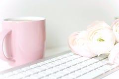 Composição denominada com ranunculos cor-de-rosa Imagem de Stock Royalty Free
