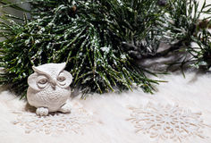 A composição do ano novo com coruja e o pinho coberto de neve ramificam Imagem de Stock