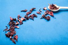 A composição do chá das pétalas do chá da rosa sudanesa é ficada situada em uma colher em um fundo azul Hibiscus seco fotografia de stock royalty free