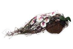 Composição do coco, da orquídea, das rochas e das videiras Fotos de Stock Royalty Free