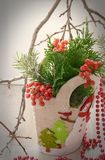 Composição do inverno com ramos do pinho Imagens de Stock Royalty Free