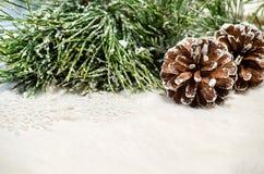 A composição do Natal com cones do pinho e o pinho ramificam Fotos de Stock Royalty Free