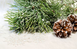 A composição do Natal com cones do pinho e o pinho ramificam Imagens de Stock