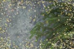 Composição do Natal de ramos do abeto e de bagas do viburnum em um fundo concreto Foto de Stock