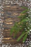 Composição do Natal de ramos do abeto e de bagas do viburnum em um fundo de madeira Fotos de Stock
