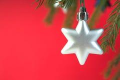 Composição do Natal de ramos do abeto e de bagas do viburnum em um fundo vermelho Fotografia de Stock Royalty Free