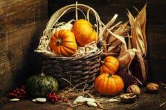 Composição do outono Fotos de Stock