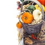 Composição do outono Foto de Stock Royalty Free