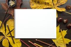 Composição do outono com álbum vazio e as folhas caídas Fotos de Stock Royalty Free