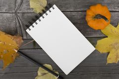 Composição do outono com caderno vazio as folhas e a abóbora caídas Foto de Stock