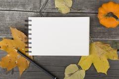 Composição do outono com caderno vazio as folhas e a abóbora caídas Fotos de Stock