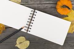 Composição do outono com o caderno aberto da placa Imagem de Stock Royalty Free