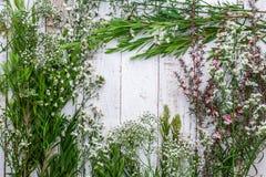 Composição do outono das folhas, das flores e das bagas na parte traseira de madeira Imagem de Stock Royalty Free
