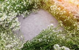 Composição do outono das folhas, das flores e das bagas na parte traseira de madeira Fotos de Stock Royalty Free