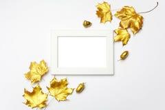 Composição do outono Quadro feito das folhas douradas do outono na luz - fundo cinzento Configuração lisa, vista superior, espaço imagens de stock royalty free