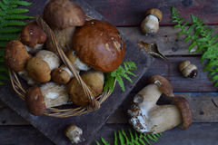 Composição do porcini na cesta no fundo de madeira Cogumelos selvagens comestíveis brancos copie o espaço para seu texto Foto de Stock Royalty Free