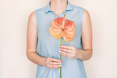 Composição do tratamento de mãos e da flor fotografia de stock royalty free
