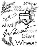 Composição do trigo Foto de Stock