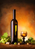Composição do vinho Fotografia de Stock Royalty Free