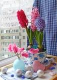 Composição dos adventos com cyclamens e hyacinths Imagem de Stock Royalty Free